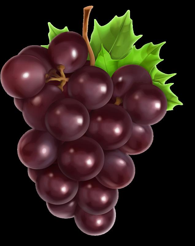 Виноград рисунок без фона