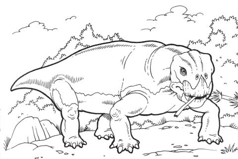 Lystrosaurus Dinosaur Coloring Page From Misc Dinosaurs Category Select From 26524 Printable Crafts Of Cartoons Nature Animals Bible And Many More