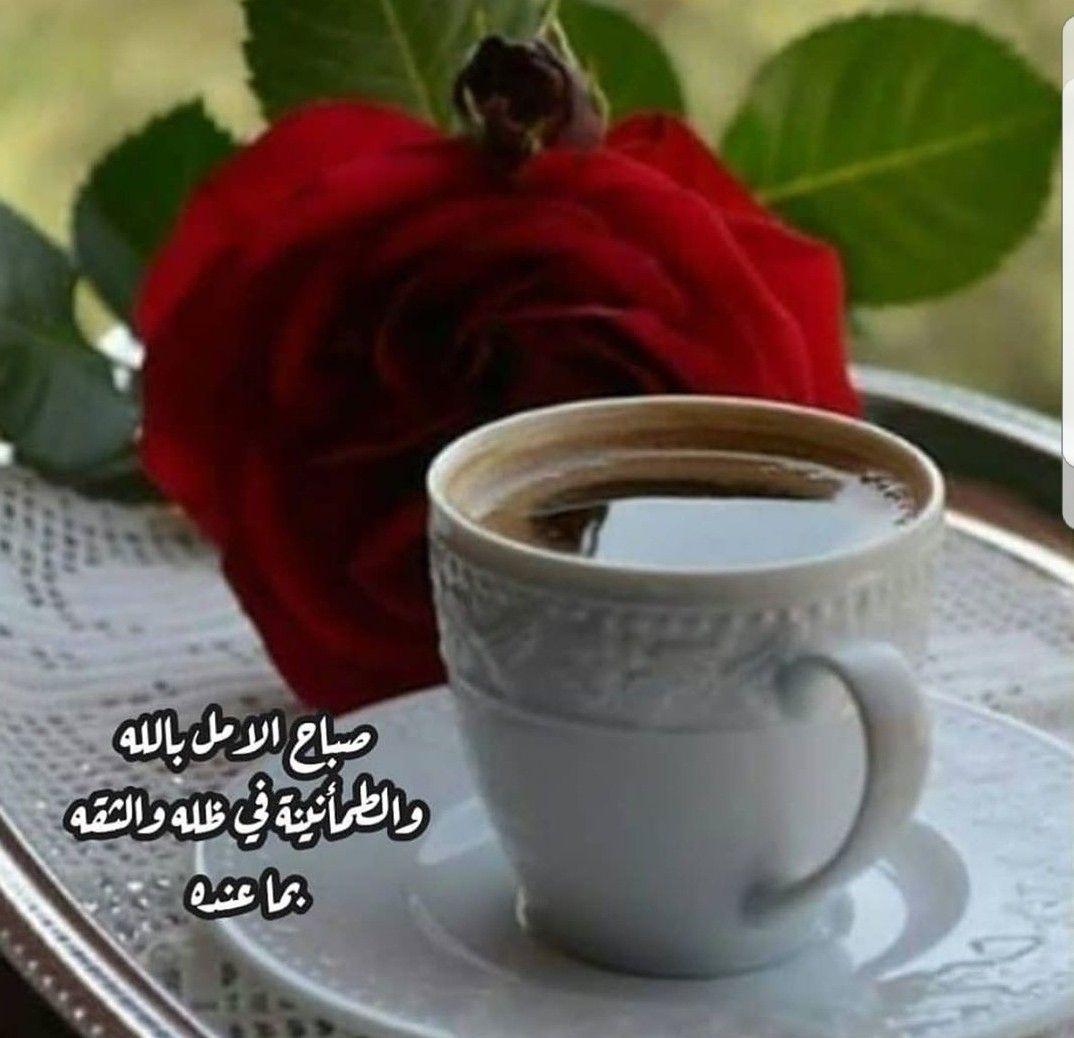صباح الخير شروق شمس