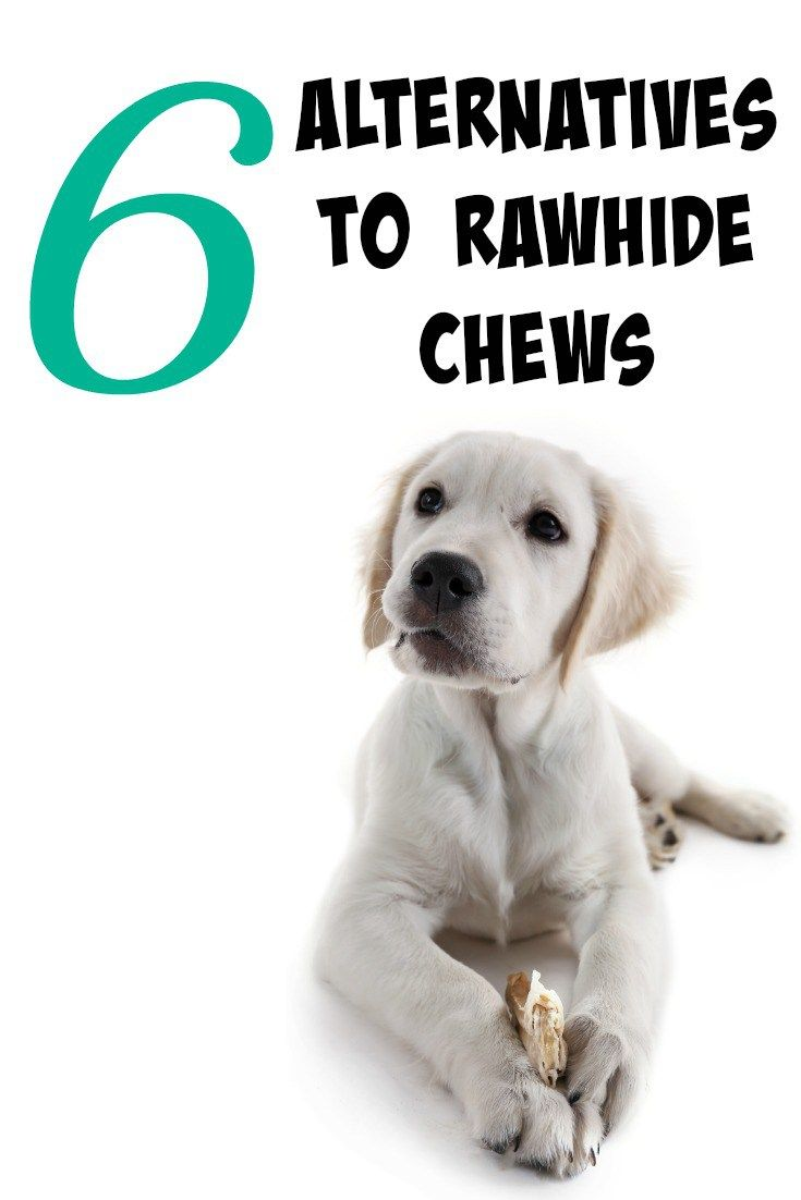 Chew Treats For Dogs Homemade
