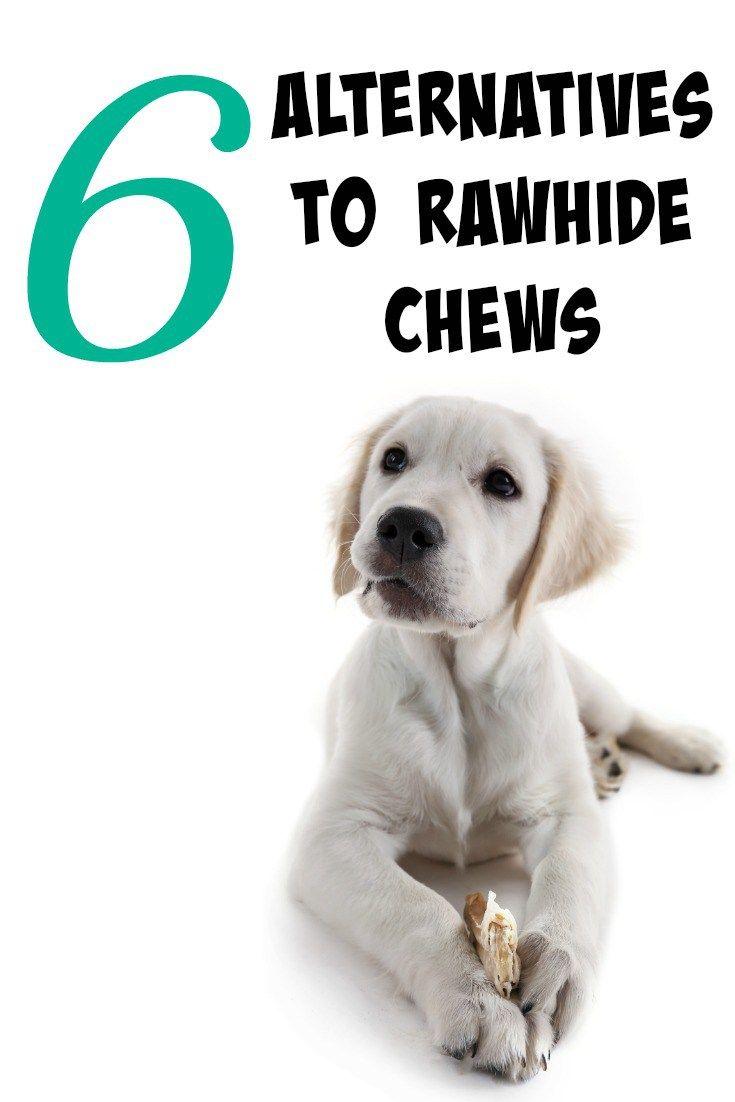 Best 25+ Rawhide chews ideas on Pinterest | Potato dog