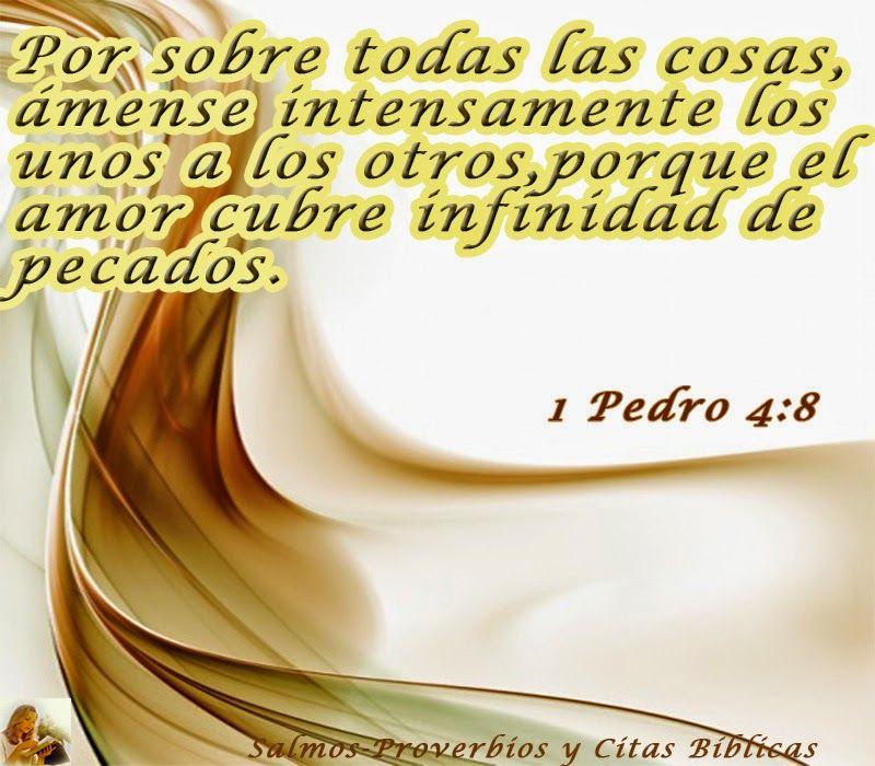 Salmos Proverbios Y Citas Bíblicas 1 Pedro 4 8 Bible