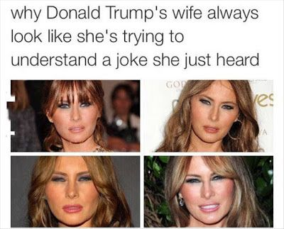 Funny First Lady Meme : Funny pictures jokes and gifs animations meet melania trump