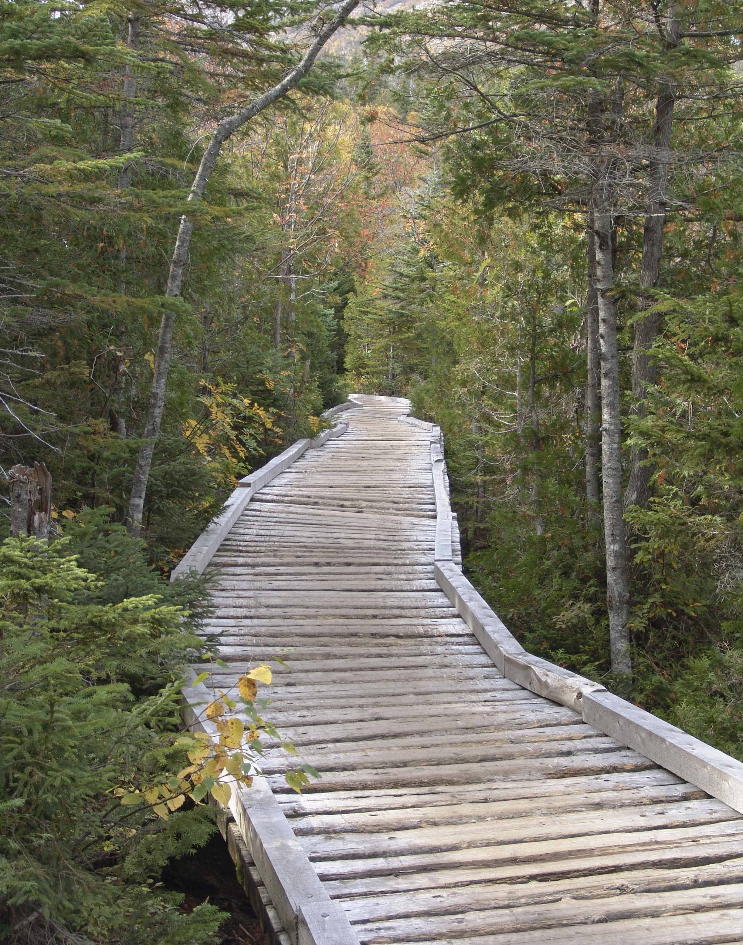 On the way to Chimney Pond, Mt.Katahdin ME. Outdoor