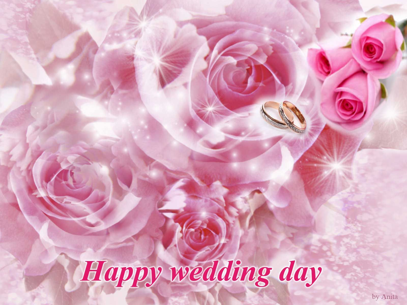 images+of+happy+wedding+day+with+doves Free Wallpapers