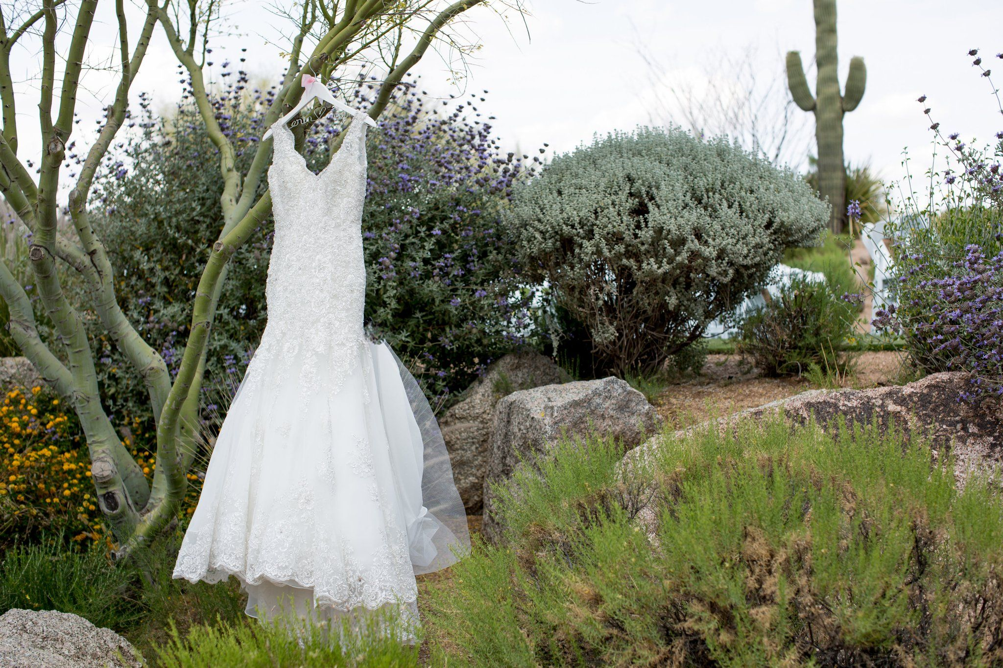 Naif and erinus americansudanese desert wedding interracial