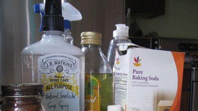 DIY Pesticides