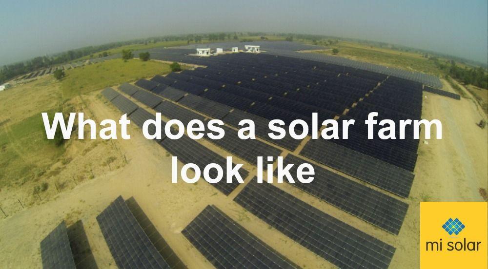 Solar Farm A Simple Know How Misolar In Solar Energy Companies Solar Energy Solar