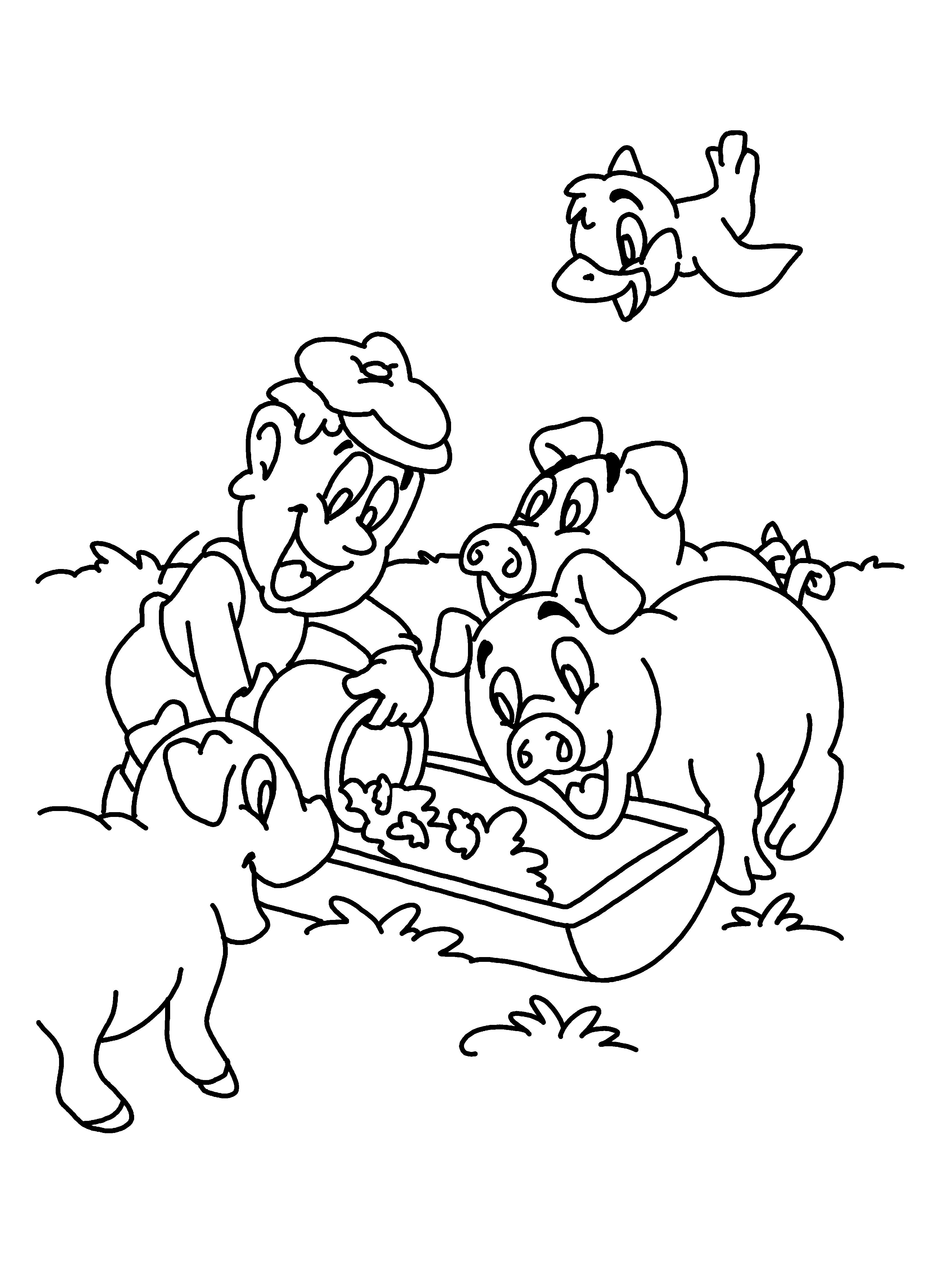 Varkens Boerderijdieren Varkens Thema