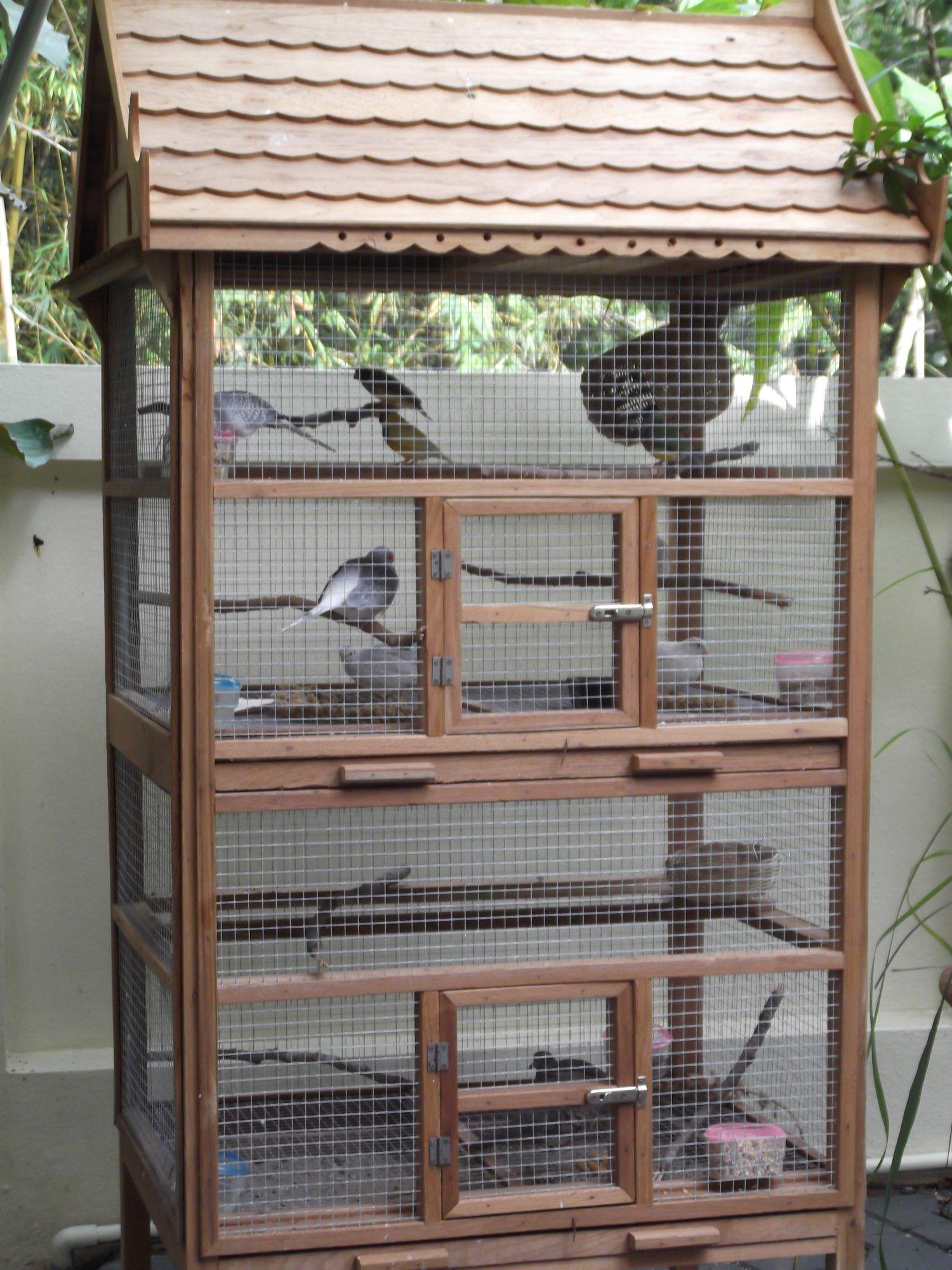 Img Bird Cage Design Diy Bird Cage Pet Bird Cage