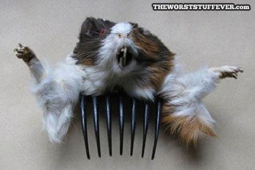 Dead rat hair comb? @Vikkitokarick I'm getting this for you!!
