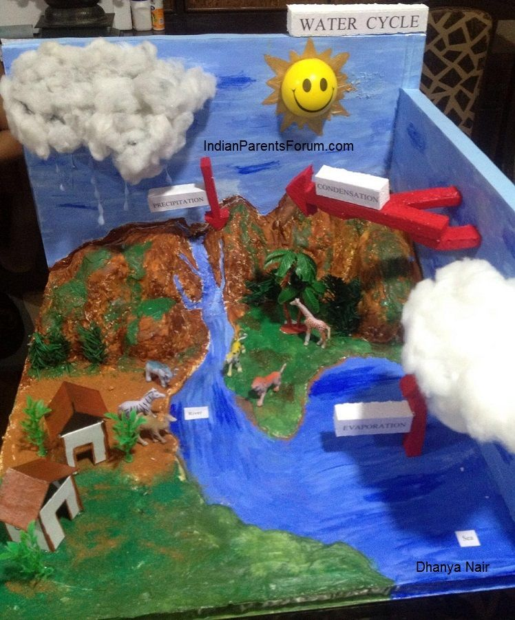 How to make 3d model of water cycle pinterest school science how to make 3d model of water cycle school science project ccuart Choice Image
