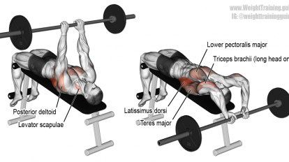 Decline bent-arm barbell pullover exercise | CHEST | Pinterest ...