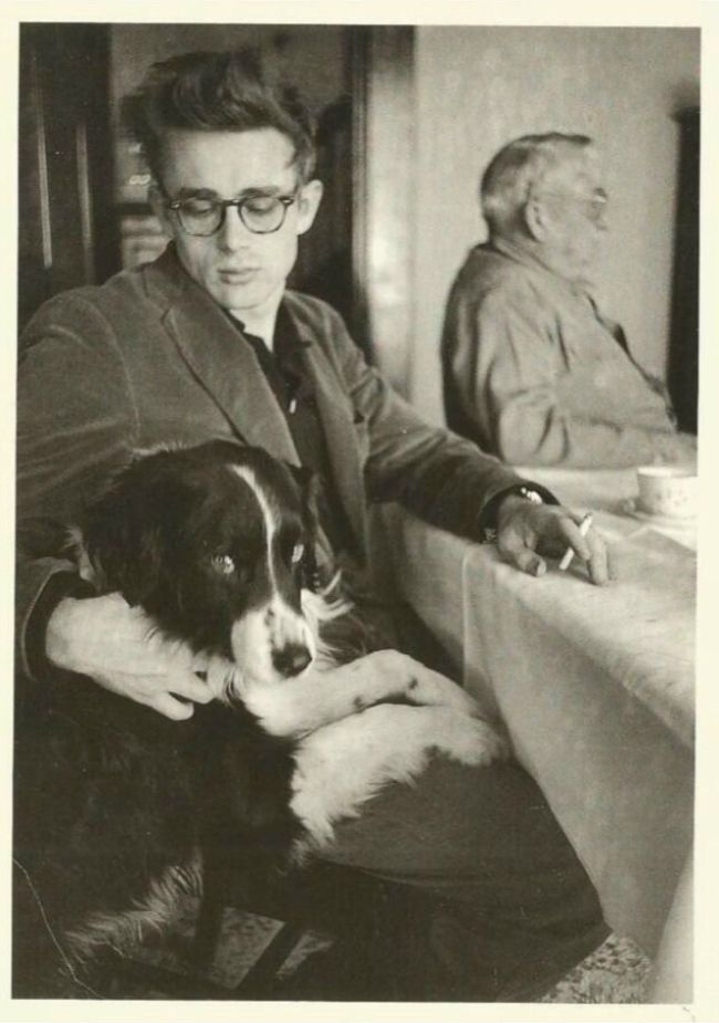 James Dean was a rebel with a dog. His Border Collie. Tuck, was always hanging around his film sets. A cool dog for a cool dude.