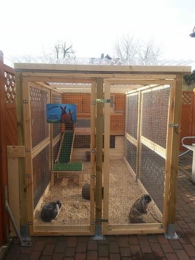 Lovely rabbit run rabbit hutch this would be soo cool for Wooden rabbit hutch plans
