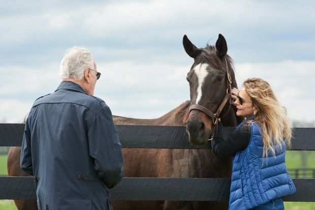 San Diego Horse Race » Any Day Now!! Zenyatta is Due With Her Fourth Foal