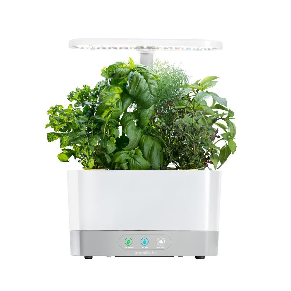 Aerogarden Harvest White Home Garden System Herb Seeds 400 x 300