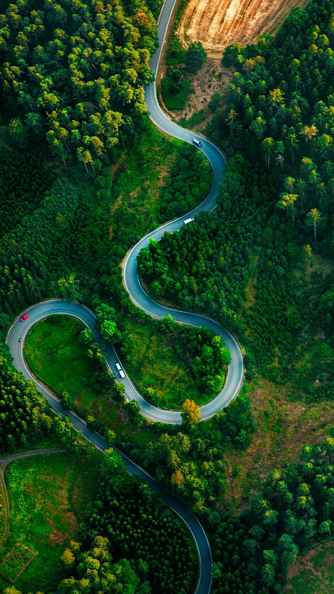 Pin By Alex Nivel On Wallpapers Aerial Photography Drone Photography Aerial View Drone photo forest road aerial view