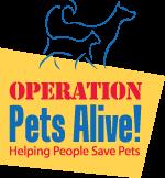 Adopt Billy On Animal Welfare League Kitty Animal Welfare