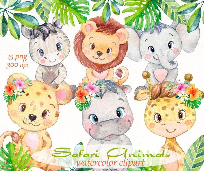 Safari Animals Clipart Watercolor Baby Jungle Elephant Etsy Animal Clipart Watercolor Animals Tropical Animals