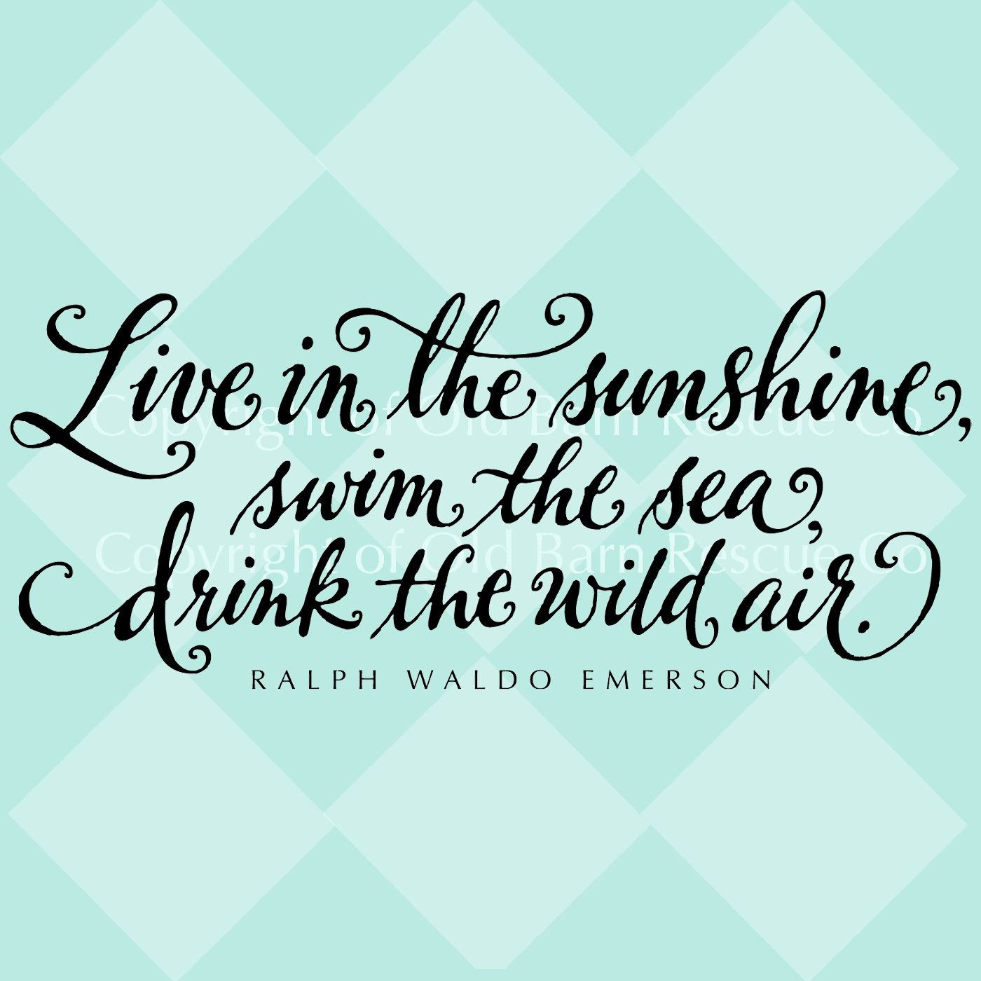 Live In The Sunshine, Swim The Sea, Drink The Wild Air.   Ralph