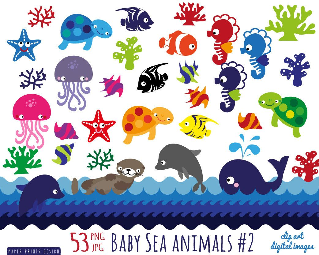 Popular Items For Pattern Clipart On Etsy Animal Clipart Sea Animals Animal Clipart Free