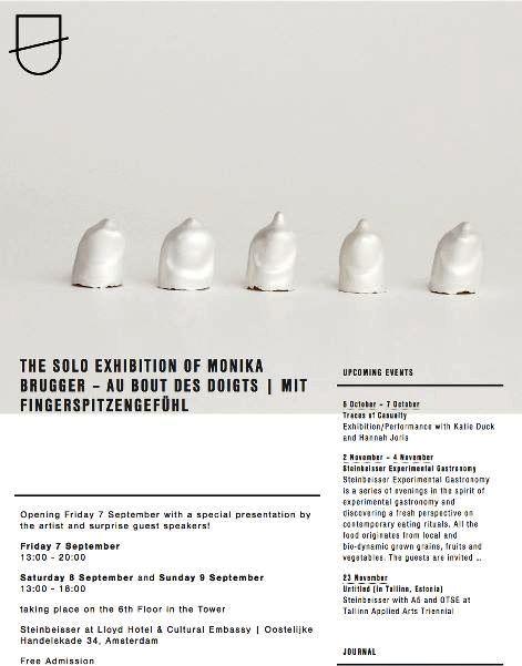 Steinbeisser - The solo exhibition of Monika Brugger    view it online: www.steinbeisser.org/newsletters/the-solo-exhibition-of-monika-brugger