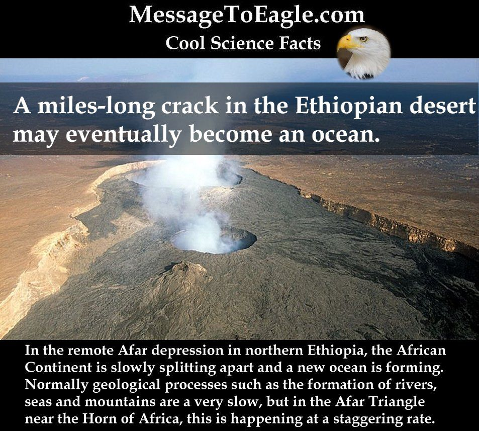 Cool science facts a miles long crack in the ethiopian for Interesting facts about crack