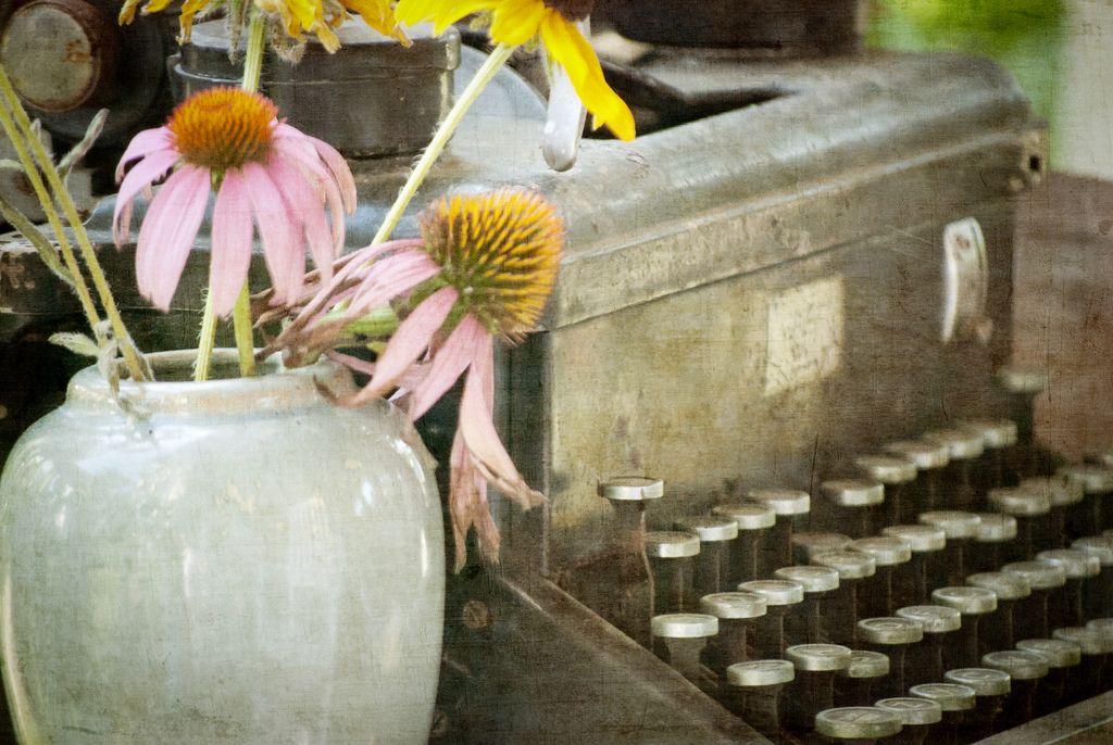 cone flowers and typewriter typewriter Vintage
