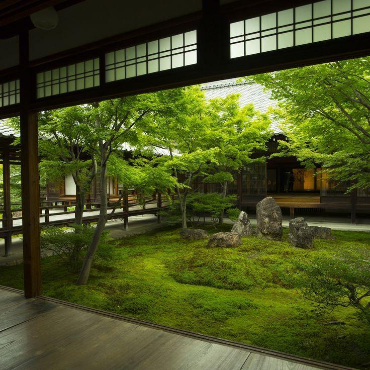 iesuuyr: Kyoto Japan #japangarden