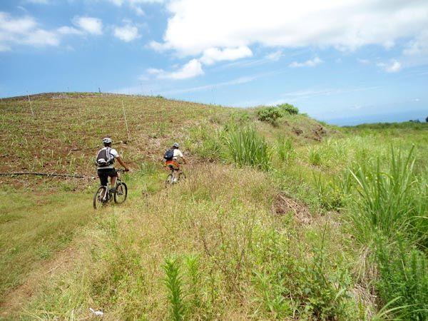 Coco Bike - Randonnées descentes tous niveaux, sorties à la carte, free ride, découverte des hauts, départ en navette de St Gilles les bains.
