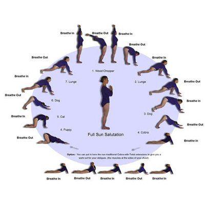sun salutes  basic yoga poses basic yoga yoga poses for
