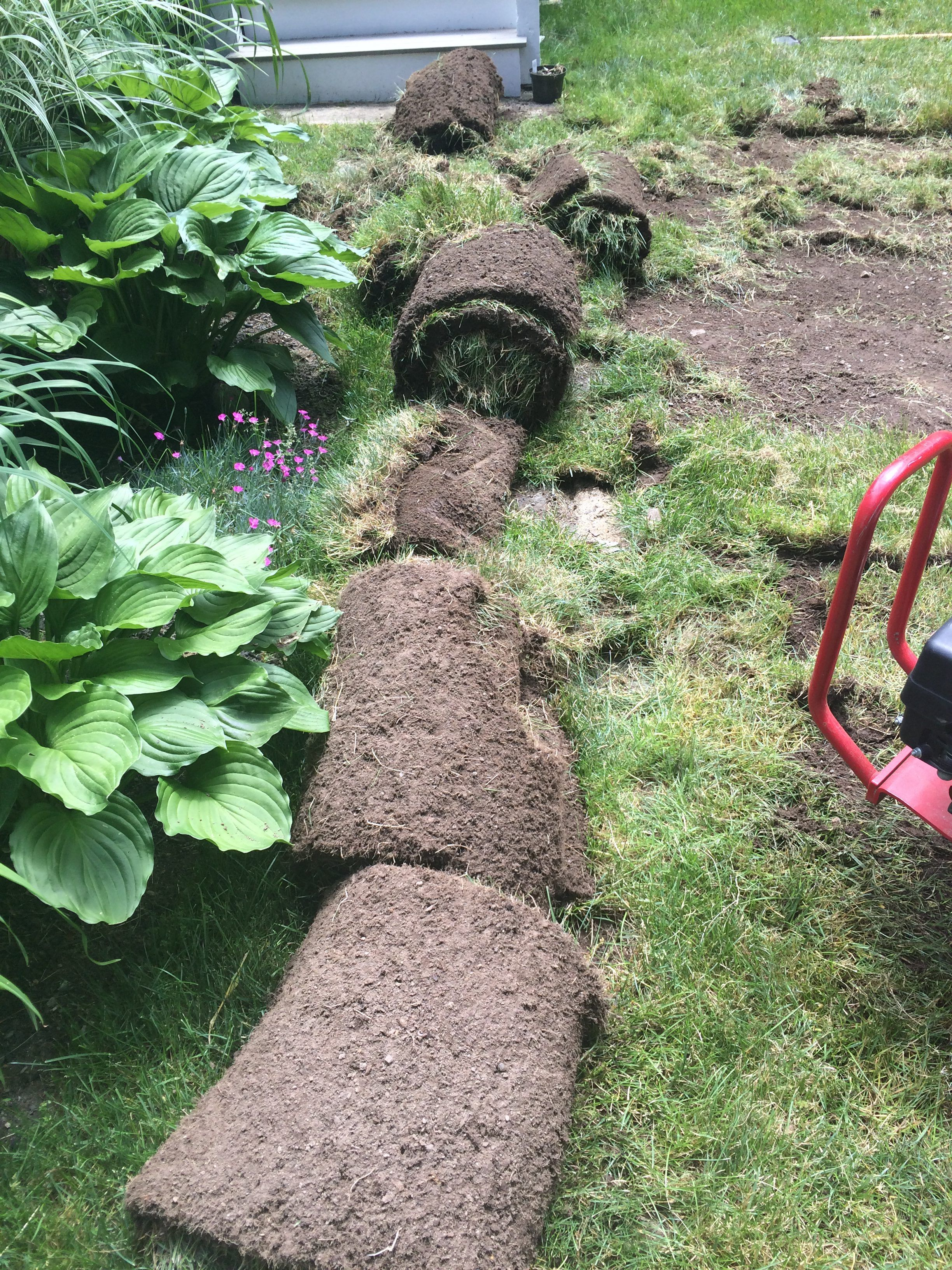 How To Diy A Fire Pit Pea Stone Patio Start To Finish Patio Stones Pea Stone Backyard Adventure