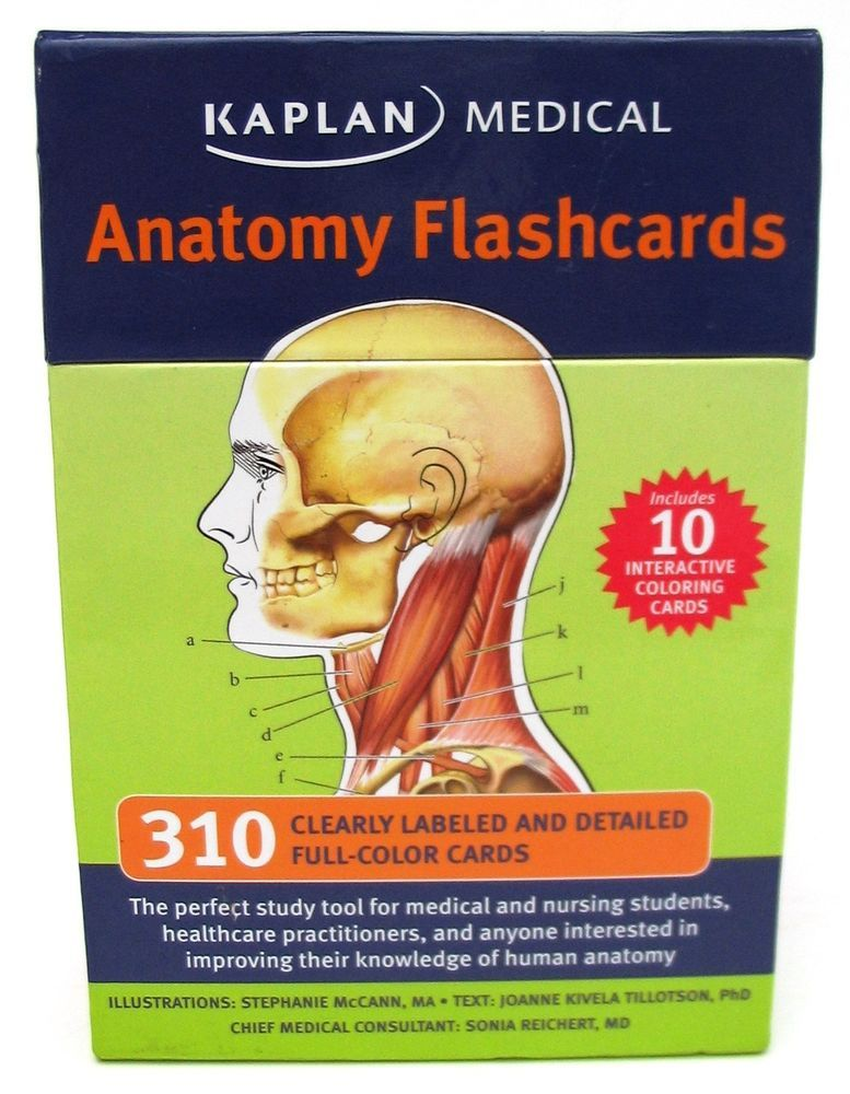Fancy Kaplan Medical Anatomy Flash Cards Illustration Human