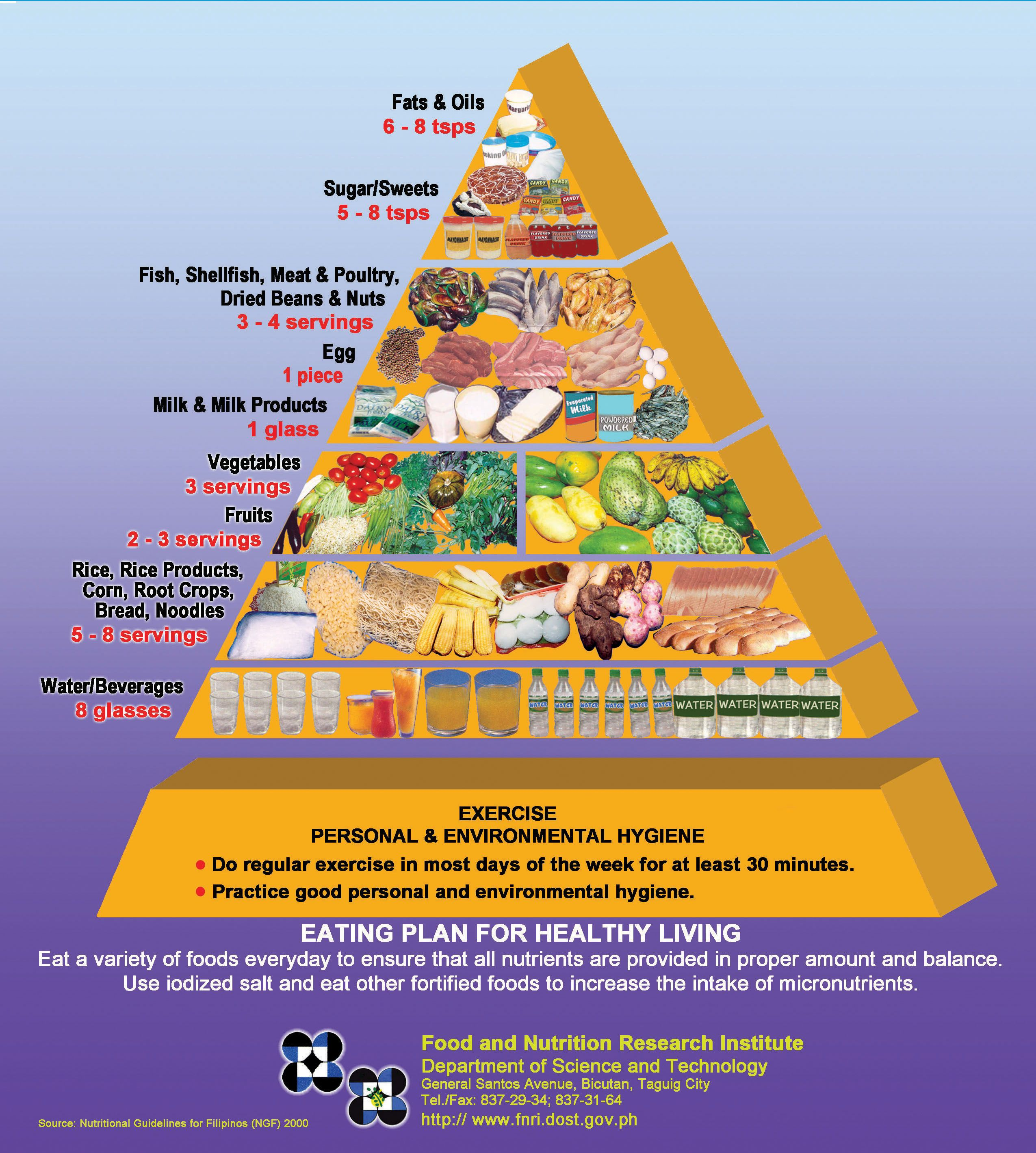 Filipino Adult Food Pyramid With Images