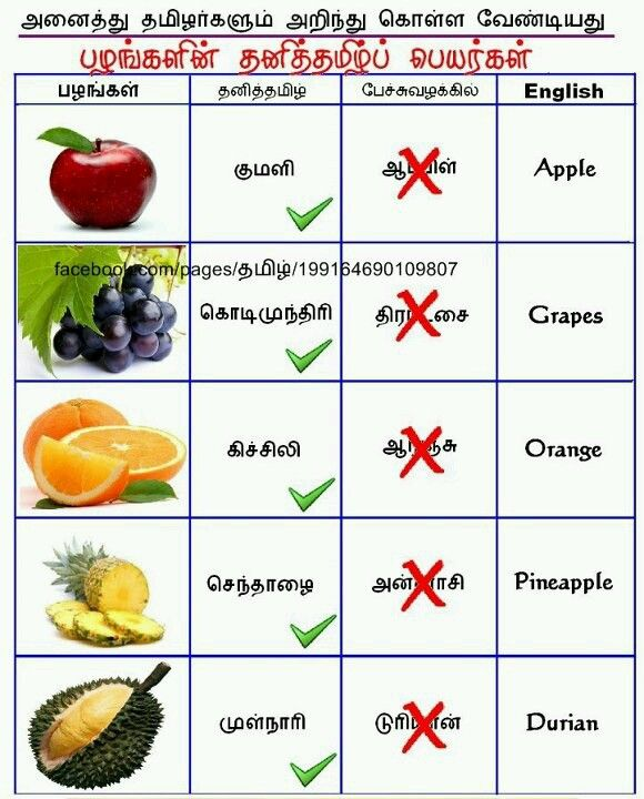 9 Month Baby Food List In Tamil : month, tamil, 8ea1fd8ef89ff3577d6d4efd97bad6e1.jpg, (580×720), Tamil, Language,, Fruit, Names,, Language, Quotes