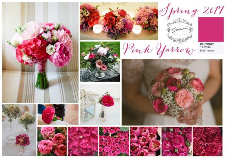 Psiu Noiva - Paleta de Cores Pink Yarrow