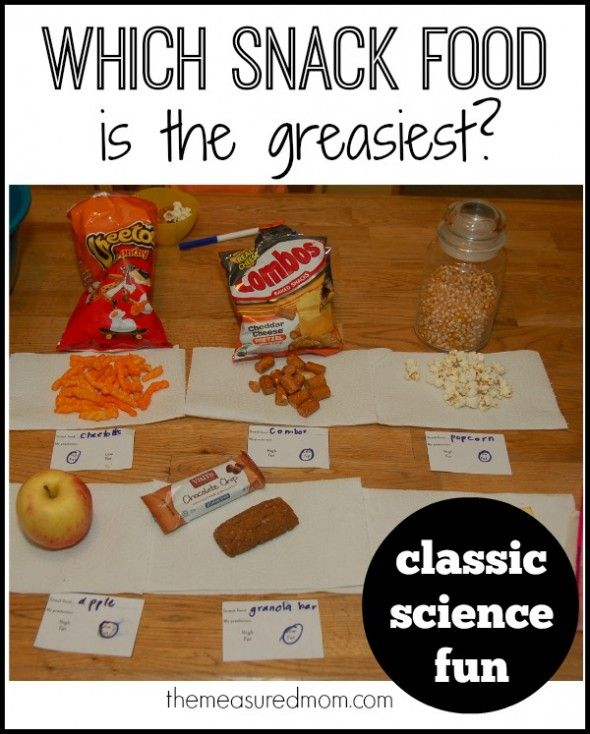 Which snack food is the greasiest classic science fun fun science investigation for kids which snack food is the greasiest forumfinder Images