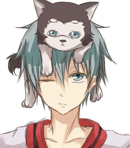 Download Kuroko No Basuke Anime Adorable Dog - 8ea30e9015d819e866d43b828a6f5b41  Best Photo Reference_316281  .jpg