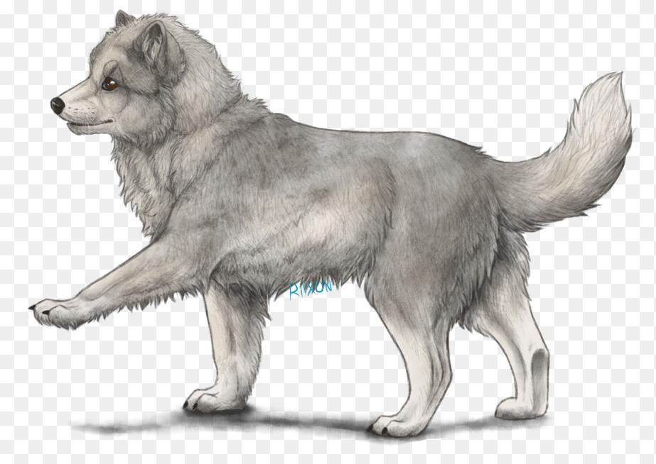 Arctic Fox Png Image With Transparent Background Arctic Fox Stock Images Free Png Photo