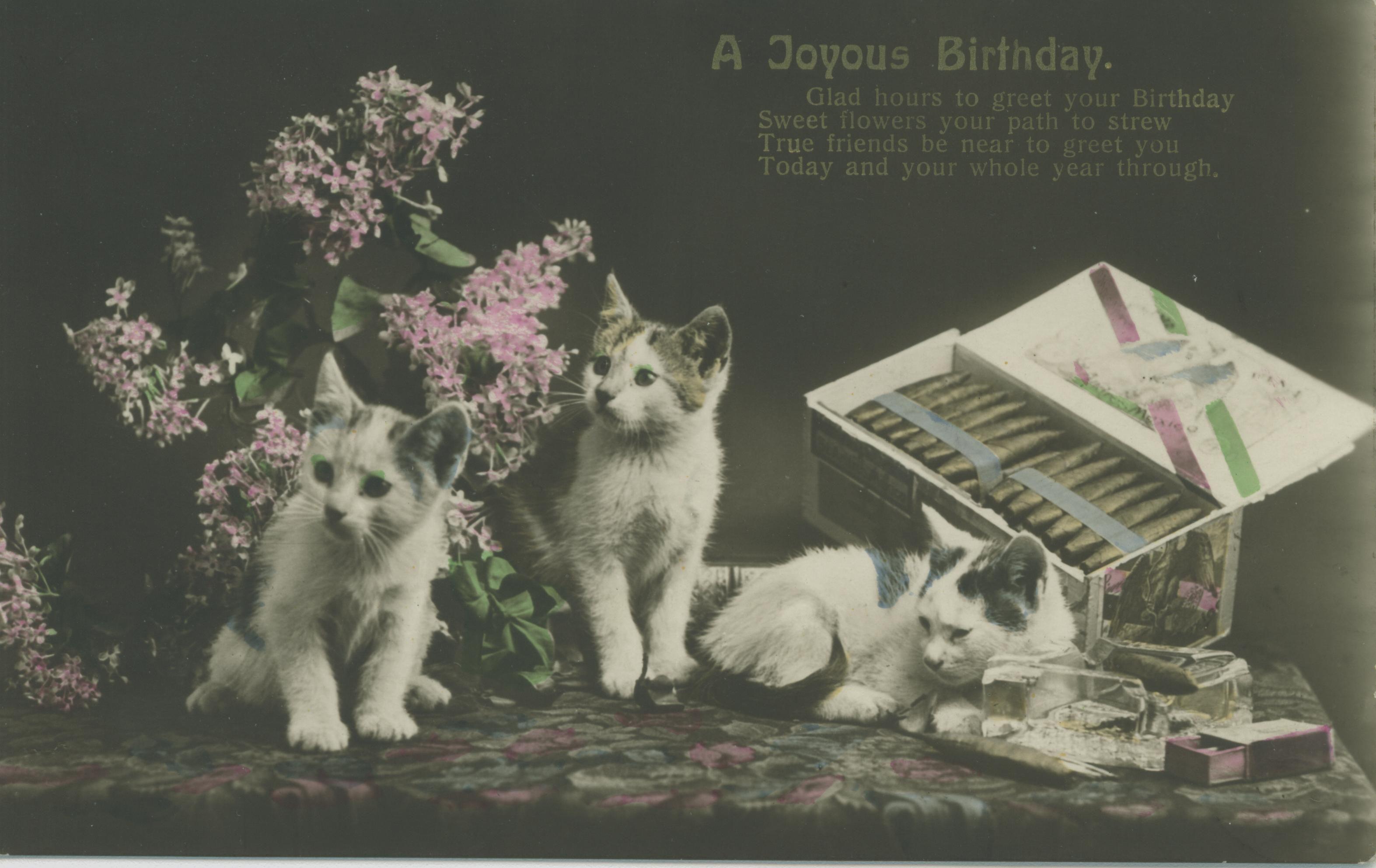 Greeting cards vintage artwork greeting cards vintage a joyous birthday vintage cat birthday card kristyandbryce Gallery