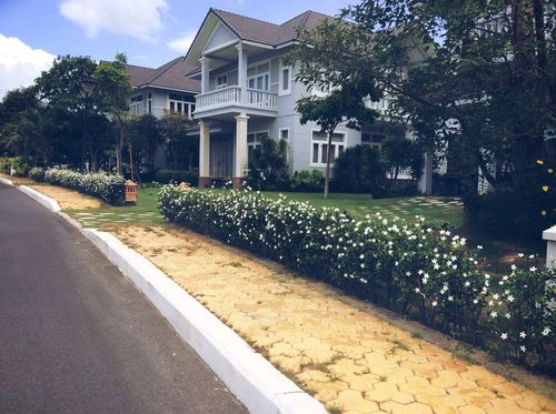 Imagem de my beautiful house