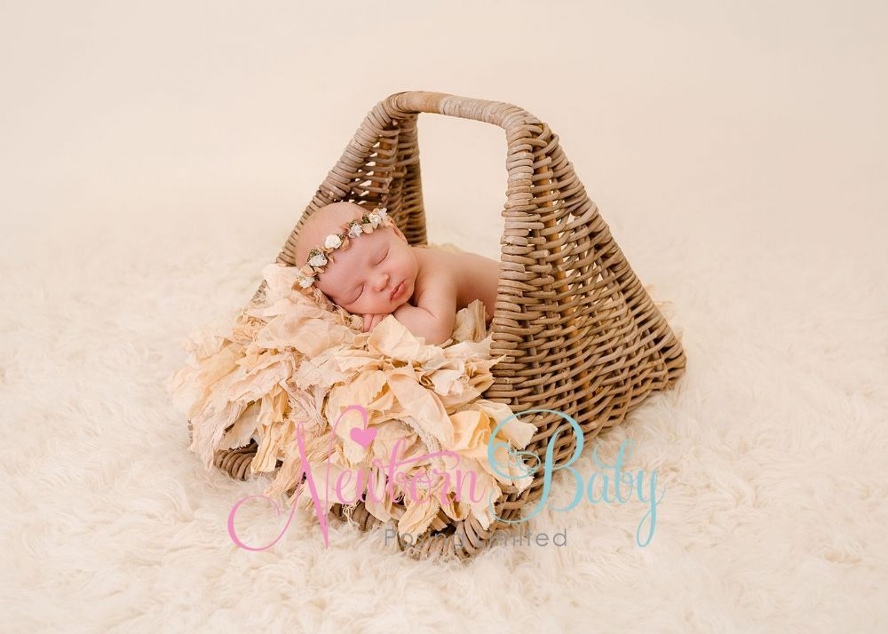 Great basket baskets are an essential newborn photography prop so is must for every newborn