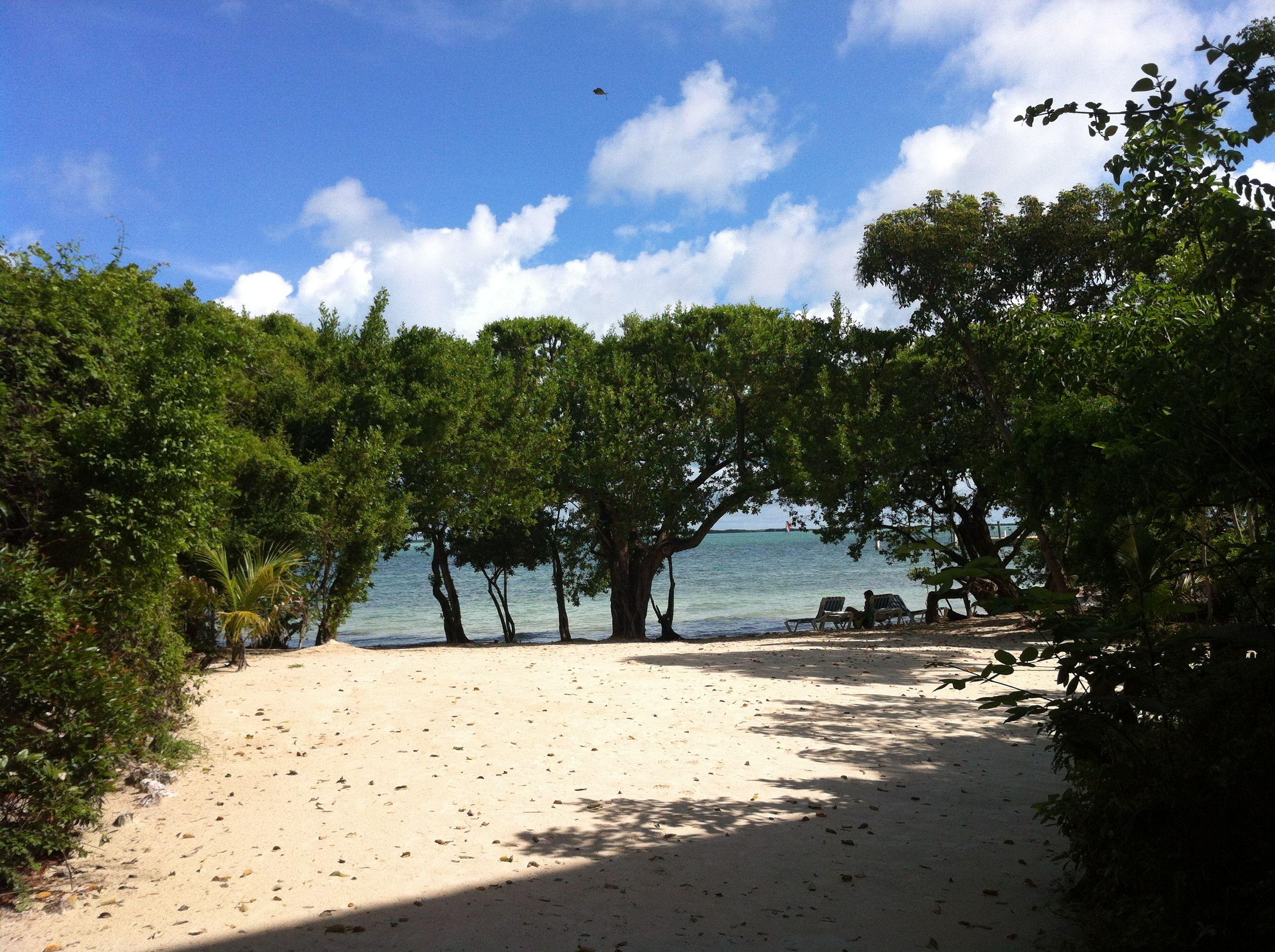 Hilton key largo resort picture of hilton key largo resort key - Hilton Key Largo Resort Brett Galloway