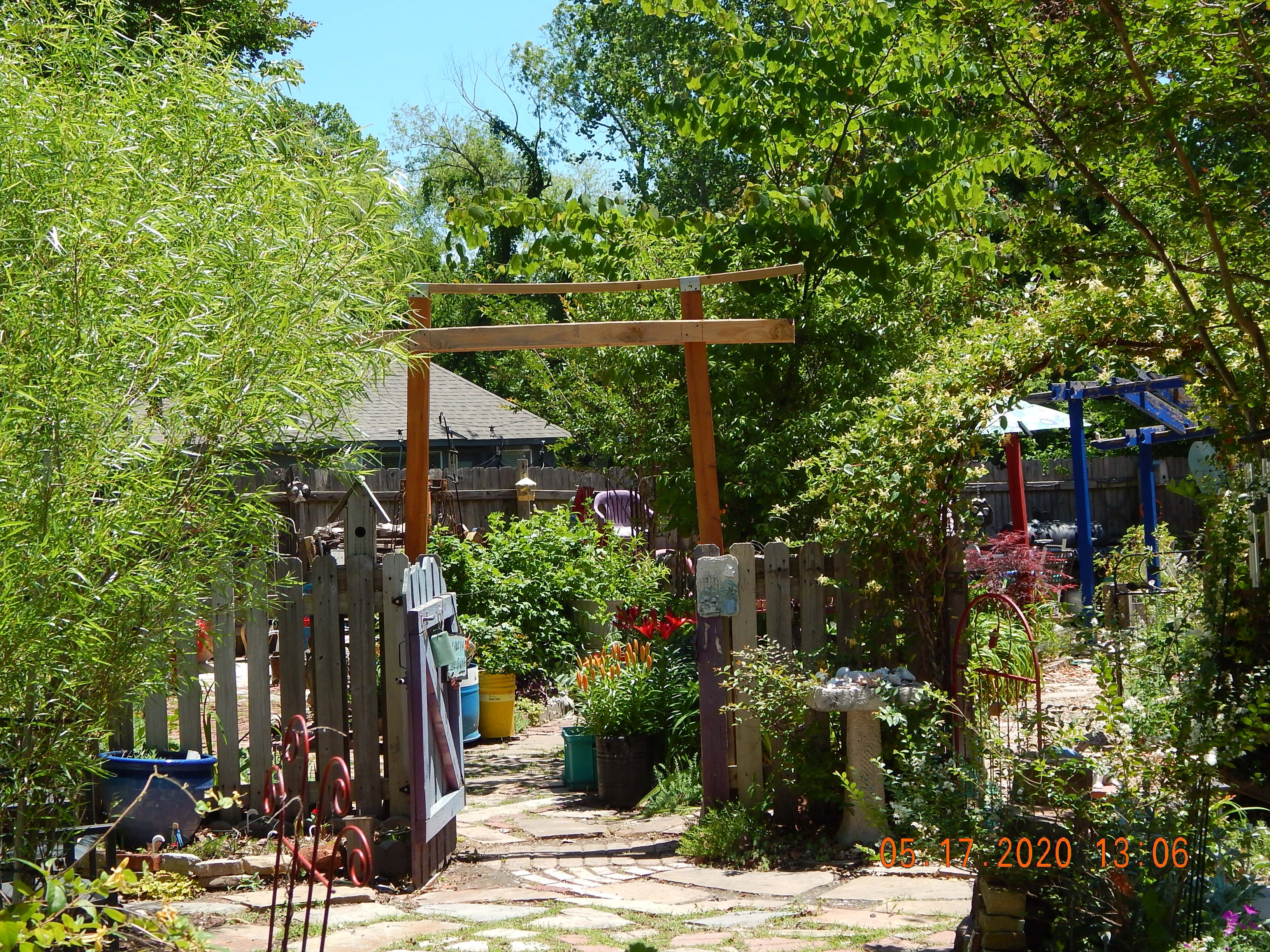Pin on 2020: the sh_ark_gardens CURRENT+FUTURE PROJECTS