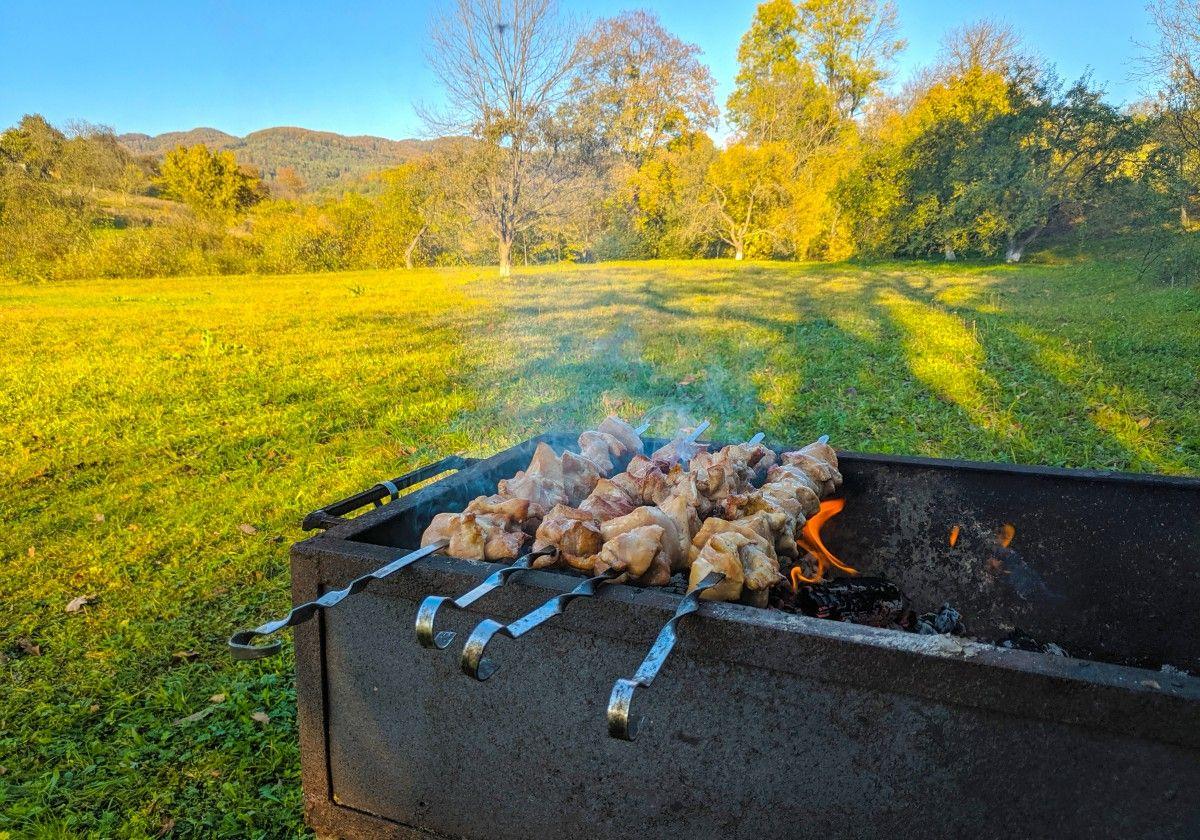 صورة عالية الدقة خالية من الشواء ورقة الأصفر الخريف العشب شجرة والمناظر الطبيعية المطبخ م Nature Natural Landmarks Photo