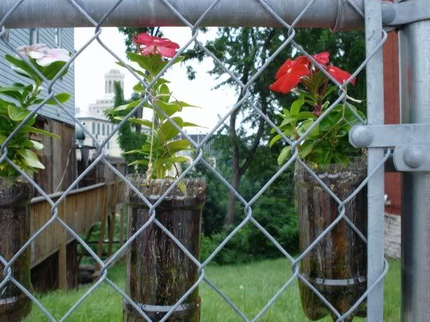 chain link fence decorations   Kiddos   Pinterest   Chain link     chain link fence decorations