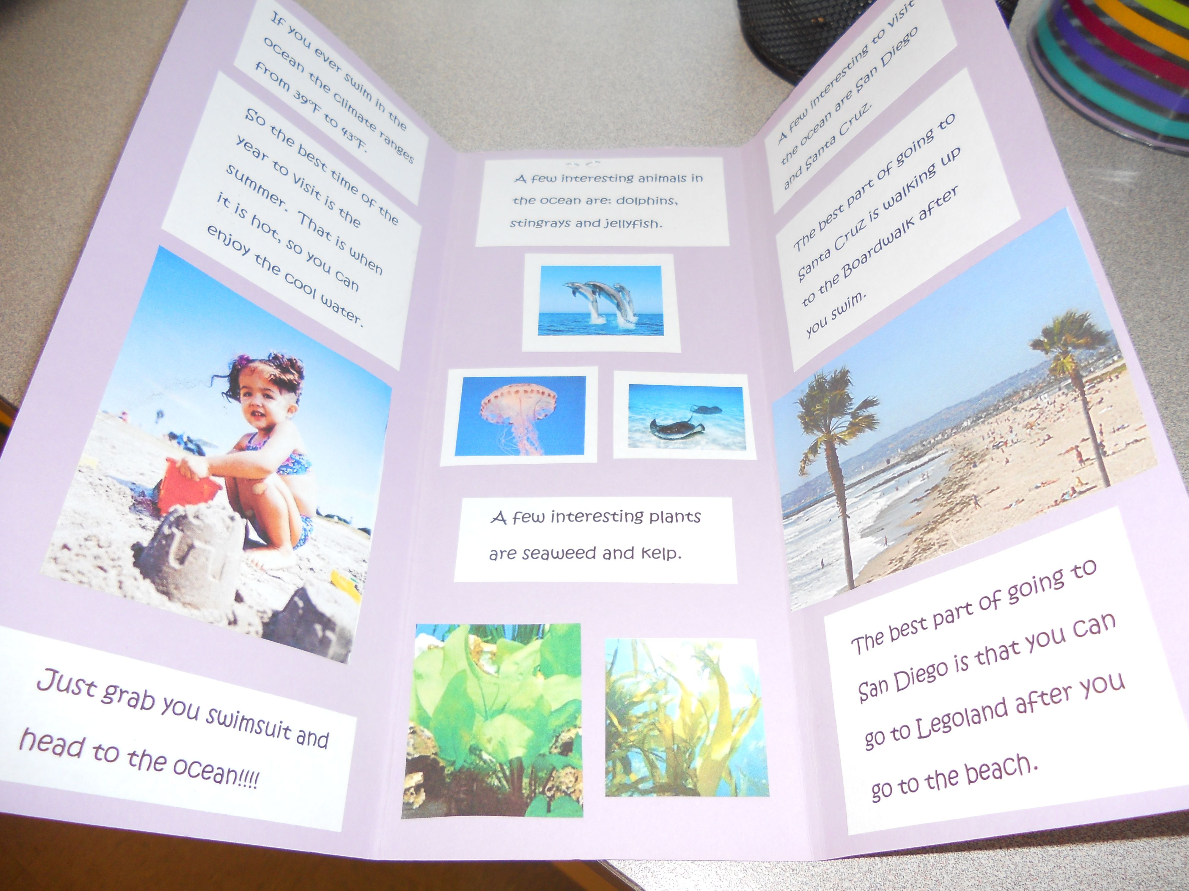 biome travel brochure as an assessment have the students create a brochure of a region in texas that explains the biome and land characteristics and why