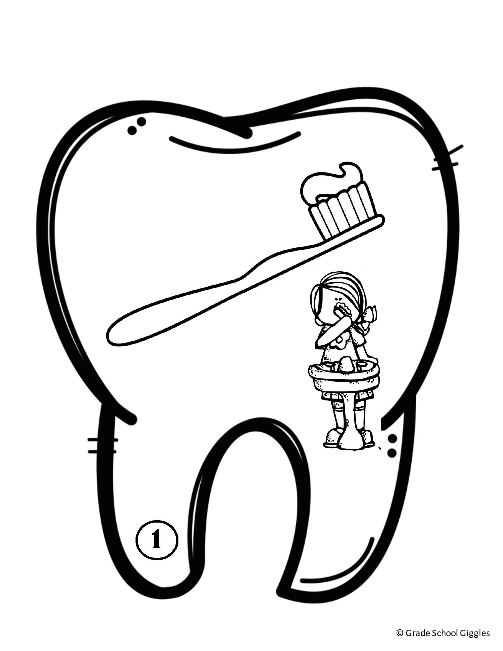 Diş Sağlığı Kitapcık Boyama Sayfaları Montessori Ve School