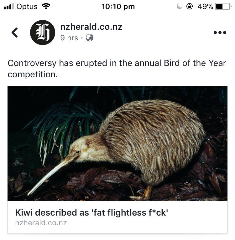 Meanwhile In New Zealand Funny Tweets Memes Funny Posts